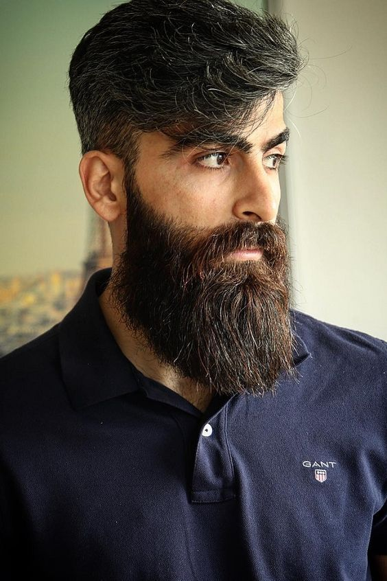 long beard styles pictures