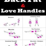 lower back fat exercises