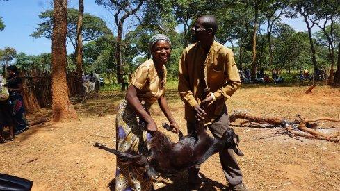 Photo: UNDP Zambia