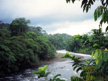 Río Sarapiquí