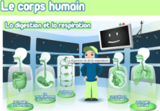 corps humain digestion respiration