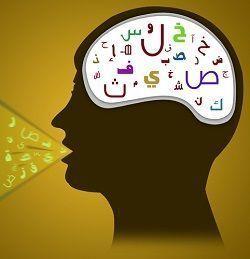 aprender frances, estilo de aprendizaje