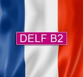frances-delfb2-470x455