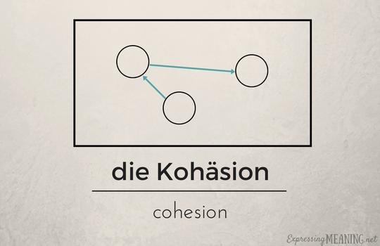 die Kohäsion - cohesion