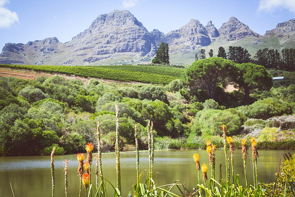 Stellenbosch Wedding Expressions Photography 004