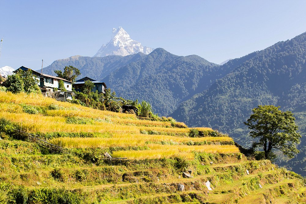 Annapurna Trekking Adventures Expressions Photography 126