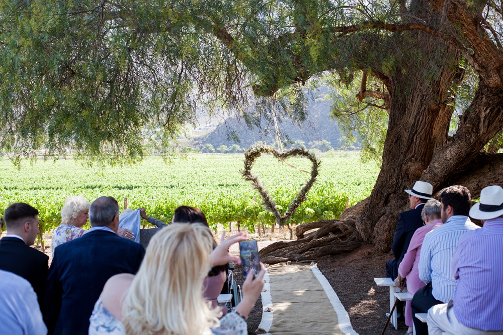 Cabrieres Montagu Wedding Expressions Photography 075