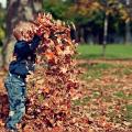 L'hyperactivité chez l'enfant peut aujourd'hui trouver des réponses thérapeutiques naturelles