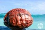 maldives-medres-logo-44