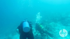 maldives-medres-logo-diving-1