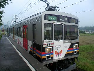 TS3E1307.JPG