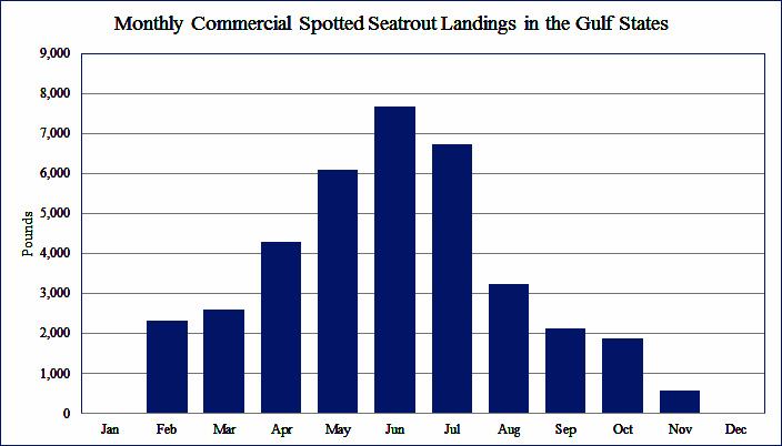 Monthly Commercial Spotted Seatrout Landings in the Gulf States