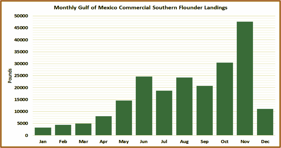 A chart showing the monthly Gulf of Mexico Commercial Southern Flounder Landings