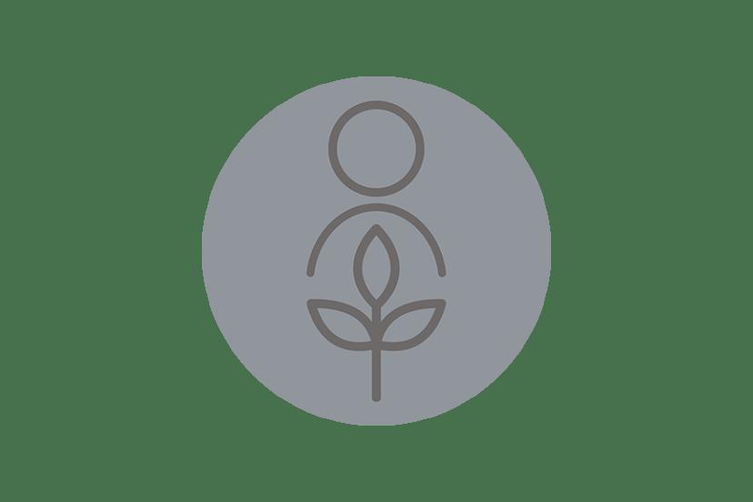 Alzheimer's Disease Workshops