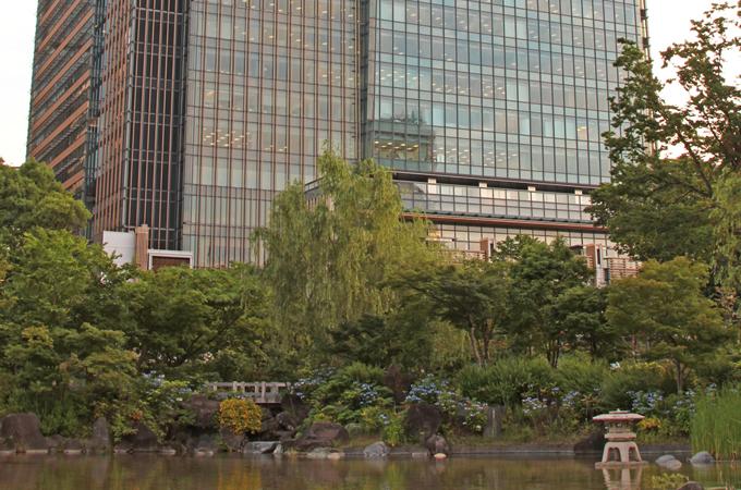 都会と植物