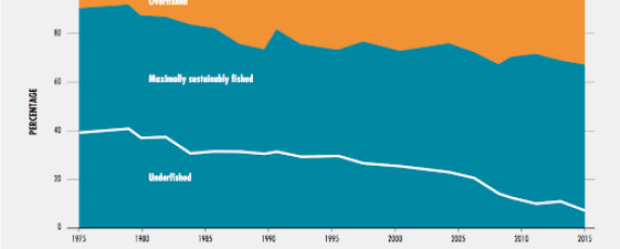 Global trends in the state of the world's marine fish stocks, 1974-2015