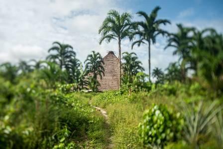 Os índios Suruwaha ficam insolados, no Sul da Amazônia