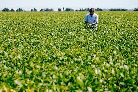 productores agropecuarios,proveen ,Vicentin ,proyecto ,expropiación,