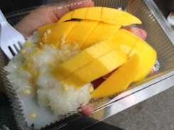 Fresh mango sticky rice hit the spot.