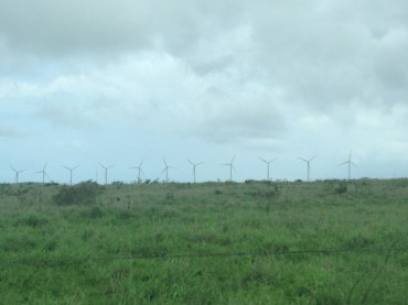 Massive windmills in the distance as we drove through rural Hawaii.