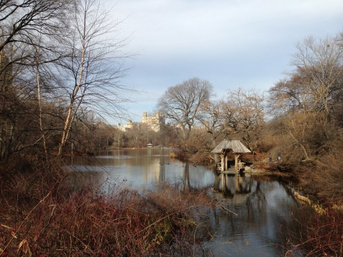 Central Park in its wintery glory.