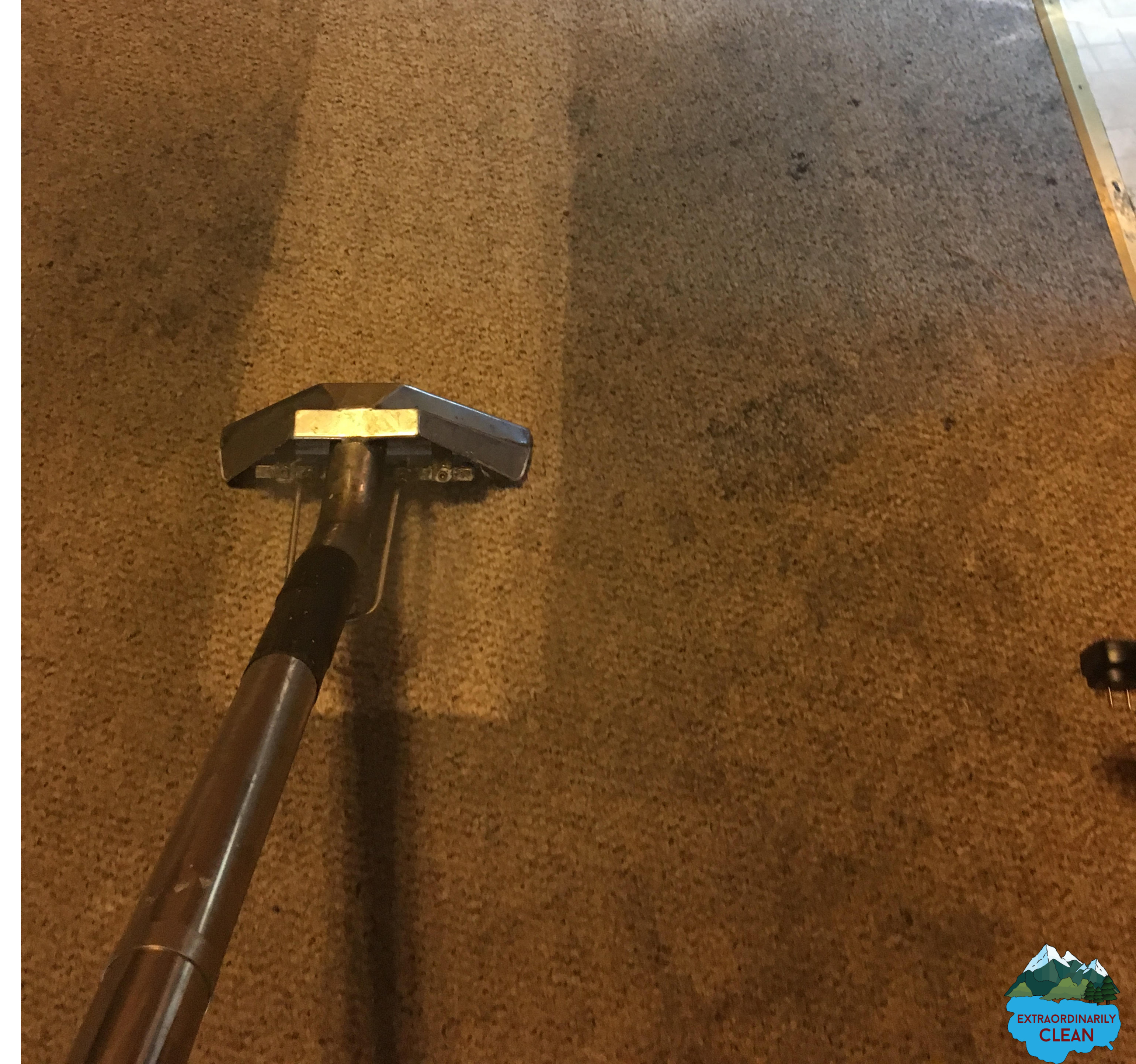 best carpet cleaning tahoe