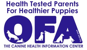 Health tested parents for healthier puppiers. Orthopedic Foundation for Animals, The Canine Health Information Center