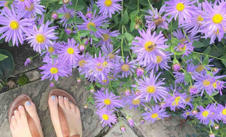 A Week Through My Feet