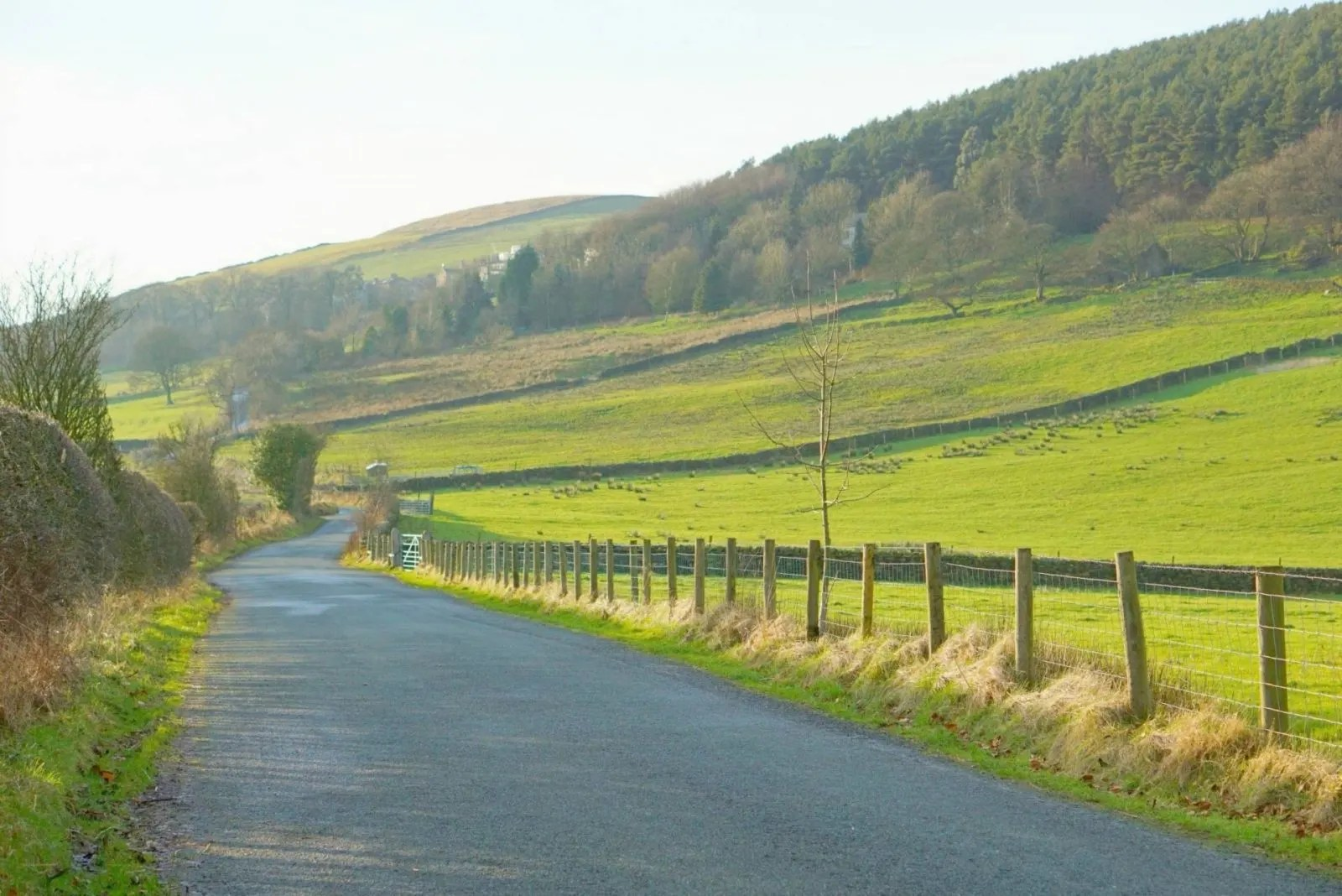 A Country Walk And Embracing The Sunshine