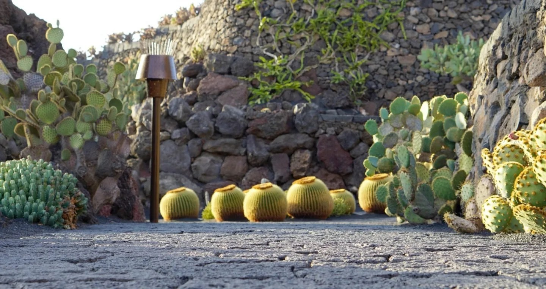 The Cactus Garden Lanzarote