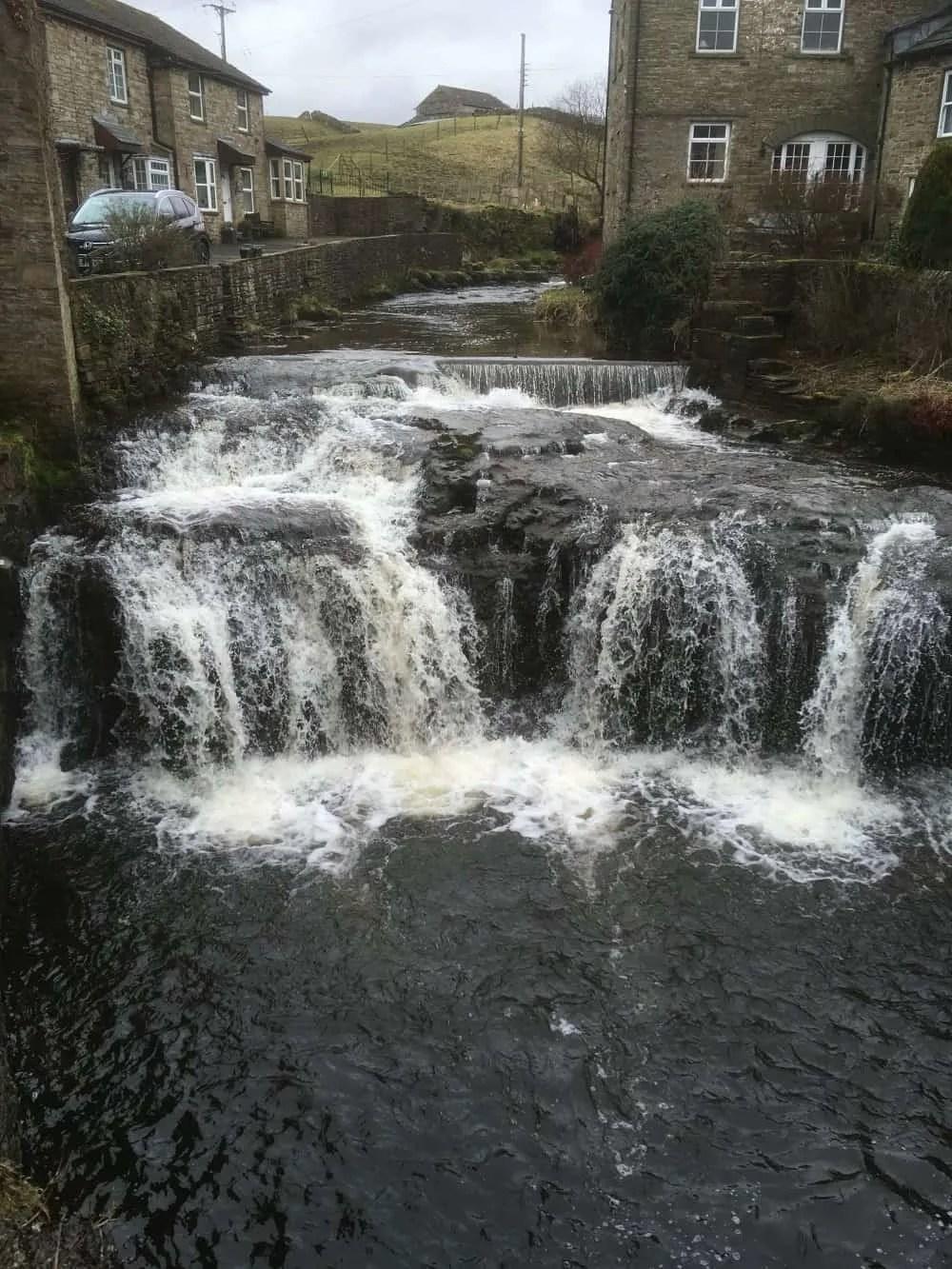 yorkshire-dales-delight, Raising Badgers