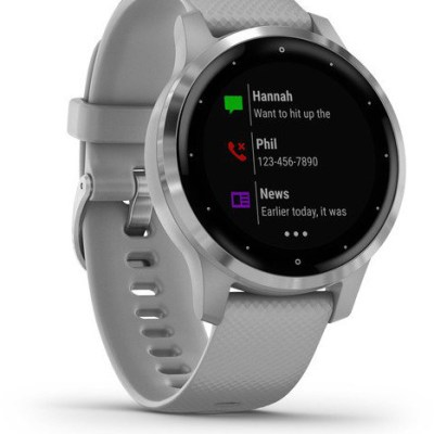 Garmin vivoactive 4S, silver/powder gray