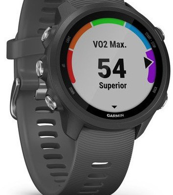 Garmin Forerunner 245 GPS, must/slate