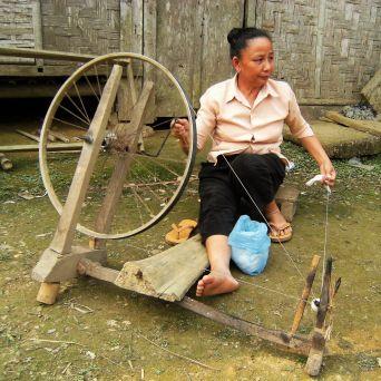Hilandera, Laos