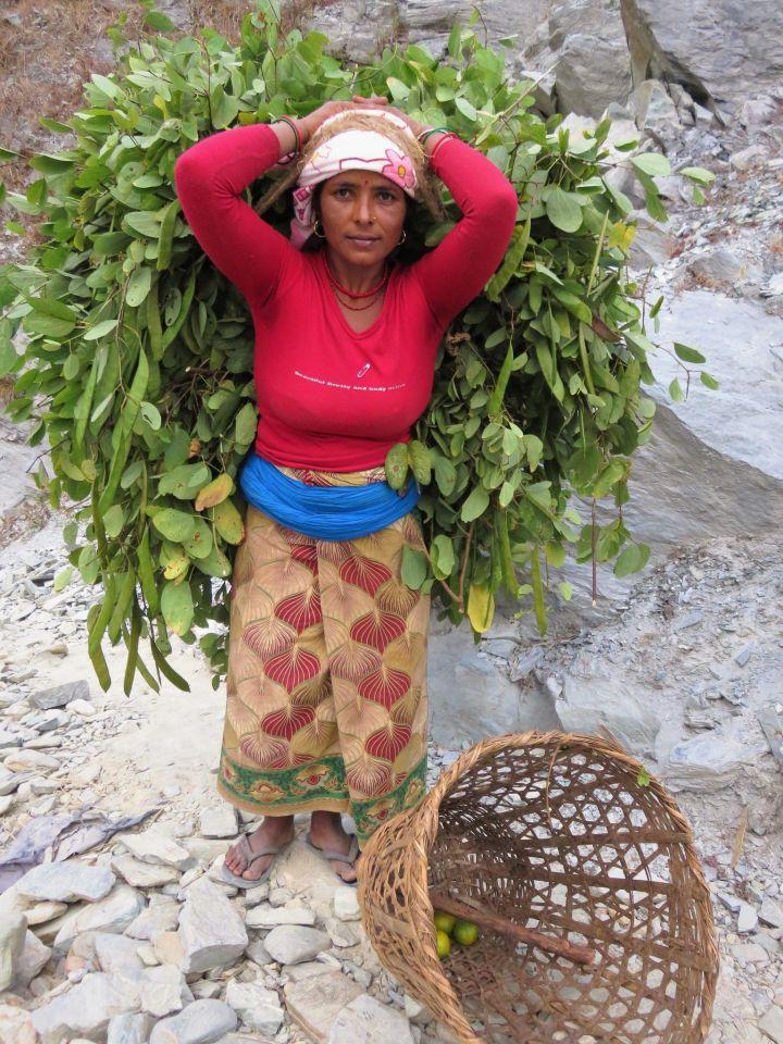Porteadora en Jayagaon, Nepal