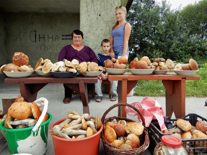 Venta de setas, Ucrania