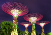 singapore architecture landscape photography for singapore pools-01