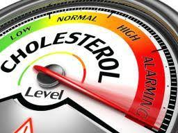 kolesterol neden olur