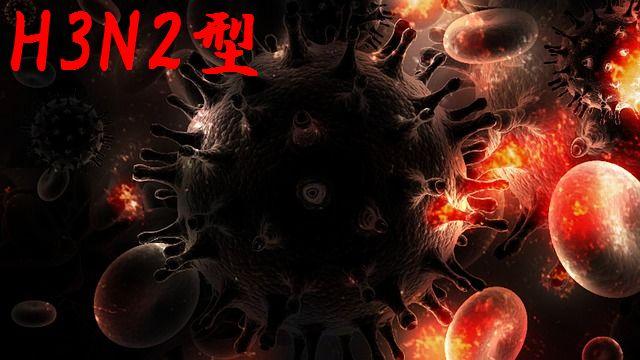 今でしょ講座、H3N2型(殺人)インフルエンザが流行の可能性?感染予防はどうしたら?