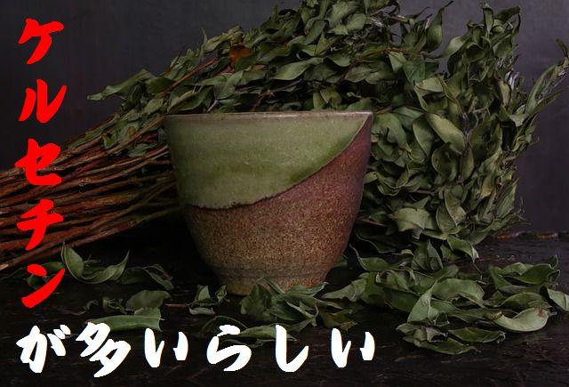 ケルセチンは緑茶で摂取し体のサビ(活性酸素)を取り除こう!