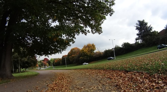 Mid-Autumn ride from Bracknell to Windsor