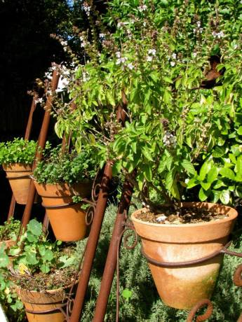 Green hanging pots