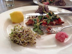 A plate of sexy raw food for the sexy yogis