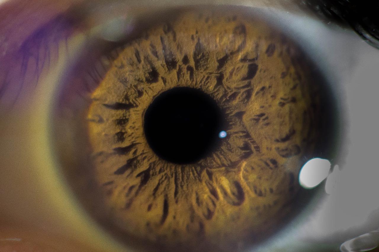 Funkcje wzroku – o czym warto wiedzieć