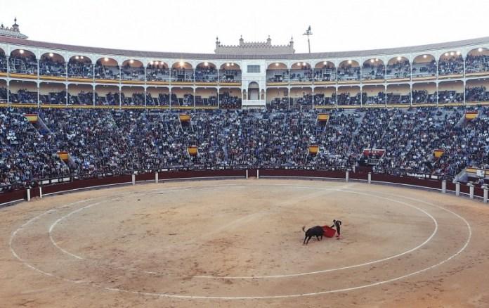 bullfight-406865_1920