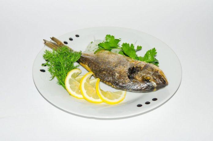 ryba 05