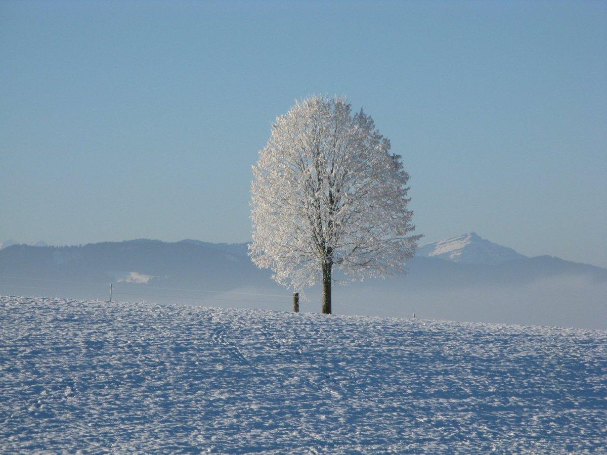 winter-198447_1920