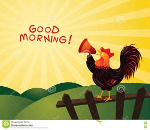 rooster crowing announcing megaphone good morning fence farm hill background 81880785 - Different Types of Timewaster
