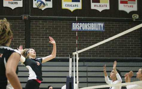 VOLLEYBALL: Tigers defeat Oakmont Vikings to secure position in playoffs