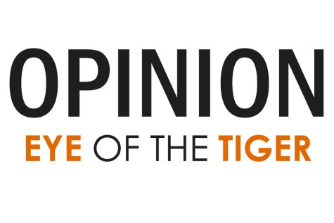 EYE OF THE TIGER'S VIEW: Common sense solutions don't always follow rules